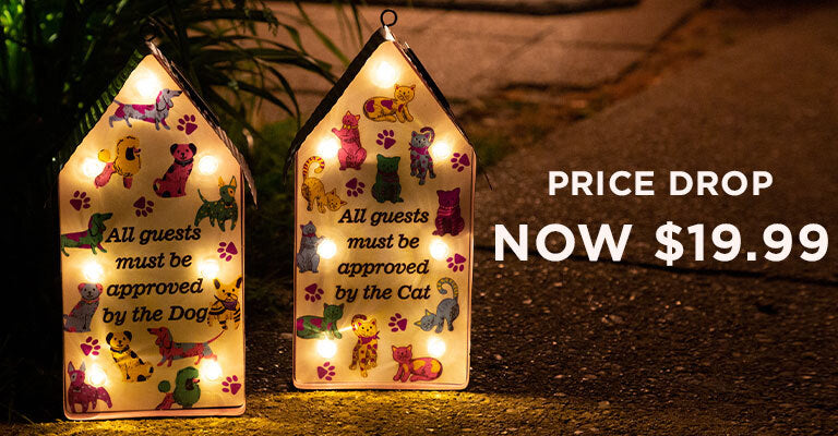 All Guests Solar Light   Price Drop   Now $19.99