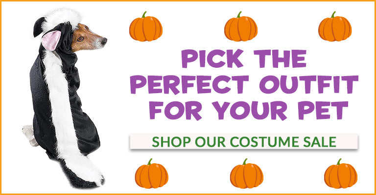 Pick the Perfect Outfit for Your Pet | Shop Our Costume Sale