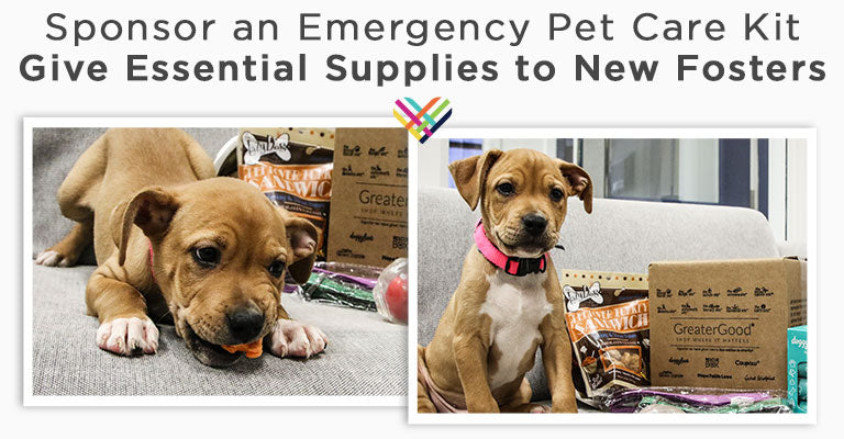 Sponsor an Emergency Pet Care Kit | Give Essential Supplies to New Fosters