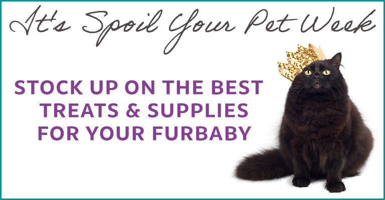 It's Spoil Your Pet Week! Stock up on the best treats & supplies for your furbaby