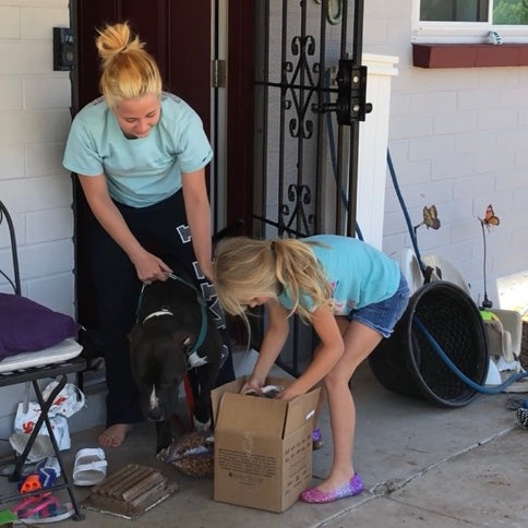 A pet foster family receives their kit deliver