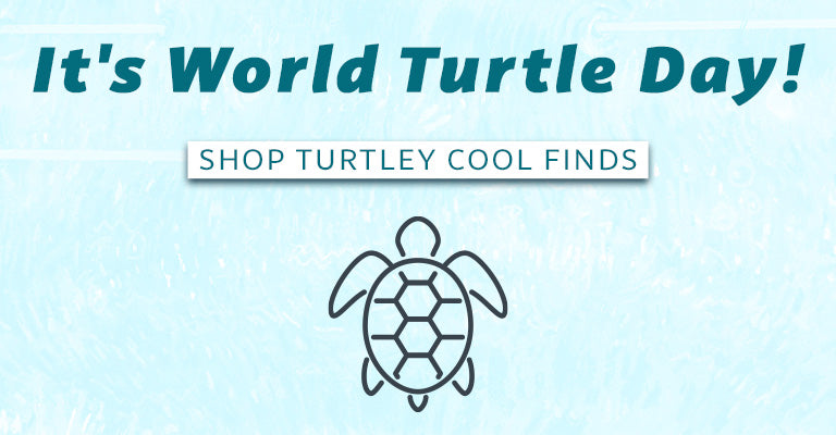 It's World Turtle Day! | Shop Turtley Cool Finds