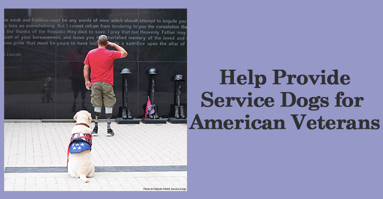Help Provide Service Dogs for American Veterans