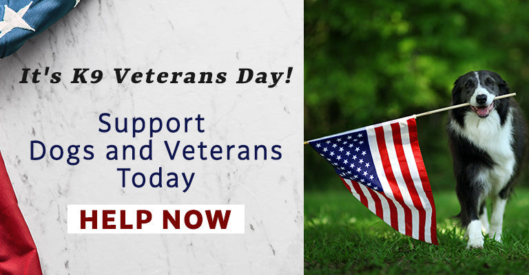 It's K9 Veterans Day! Support dogs and veterans today | Help Now