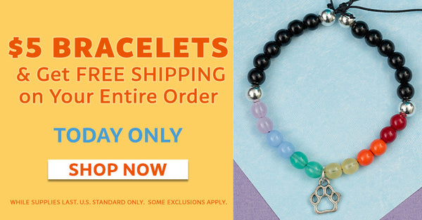 Get Free Shipping on Your Entire Order! | One Day Only!