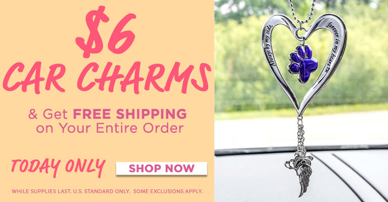 $6 Car Charms   Get Free Shipping On Your Entire Order!
