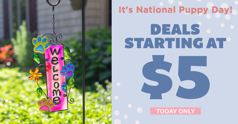 It's National Puppy Day! Deals Starting at $5 | Today Only