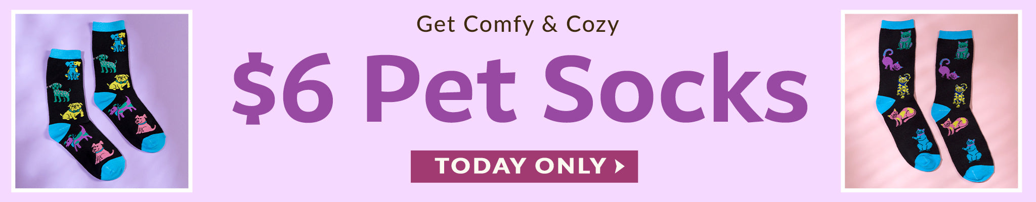 Get Comfy & Cozy   $6 Pet Socks   Today Only