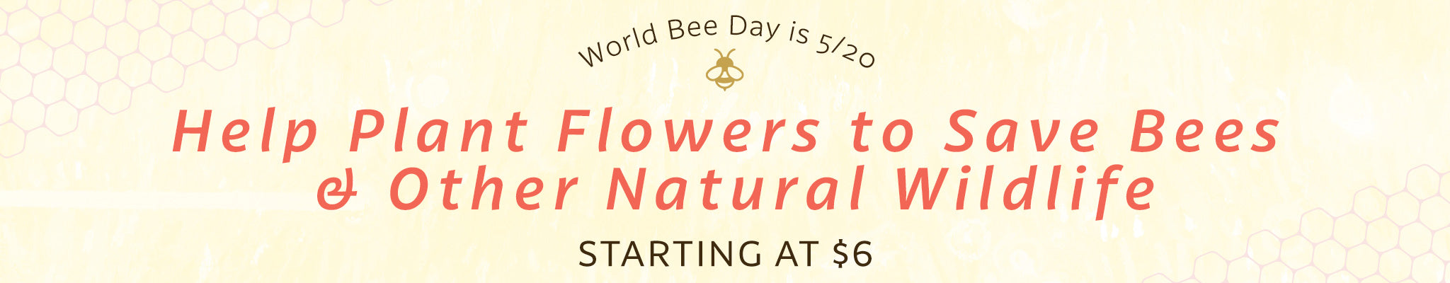 World Bee Day is 5/20   Help Plant Flowers to Save Bees & Other Natural Wildlife   Starting at $6