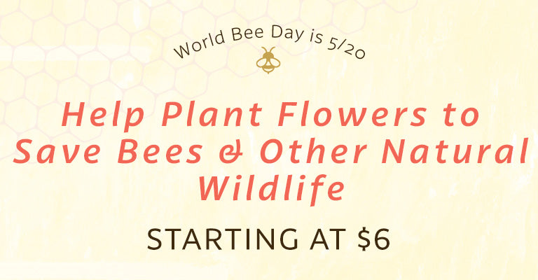 World Bee Day is 5/20 | Help Plant Flowers to Save Bees & Other Natural Wildlife | Starting at $6