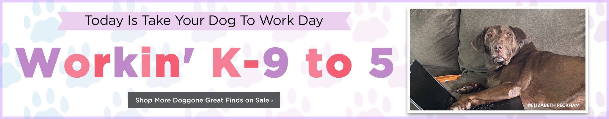 Today is Take Your Dog to Work Day | Workin' K-9 to 5 | Shop More Doggone Great Finds on Sale