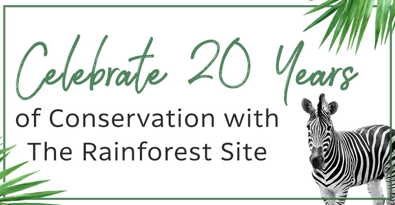 Celebrate 20 Years of Conservation with The Rainforest Site | Learn How You Can Make An Impact