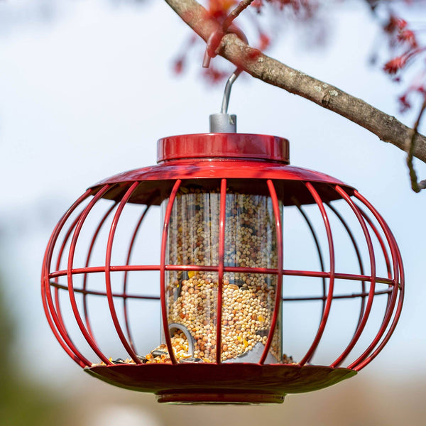 Secure Sphere Bird Feeder