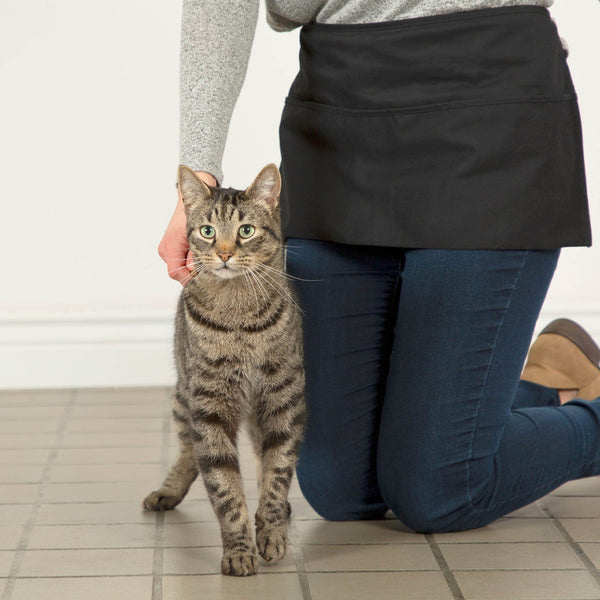 Benefit Buy - Training Packs To Help Cats & Kittens Get Adopted
