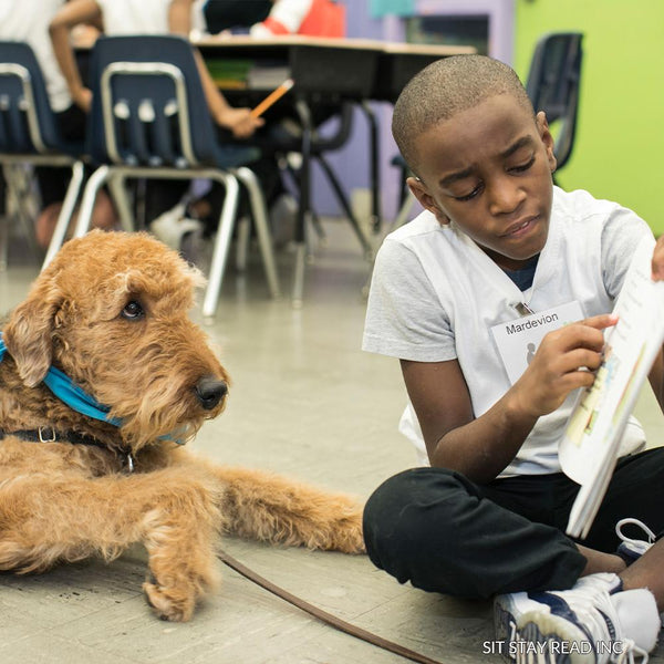 Donation - Sit Stay Read - Happy Tales For Wagging Tails