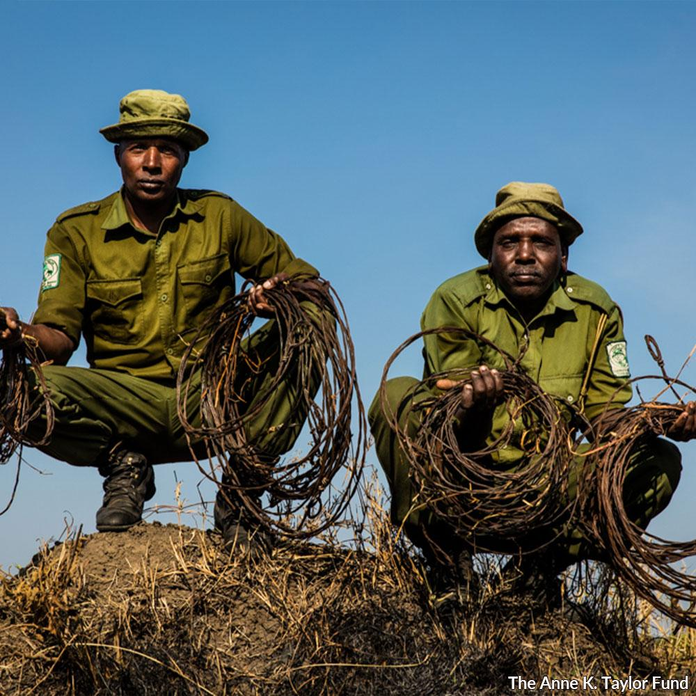 Donation - Keep Animals Safe: Remove Poachers' Snares