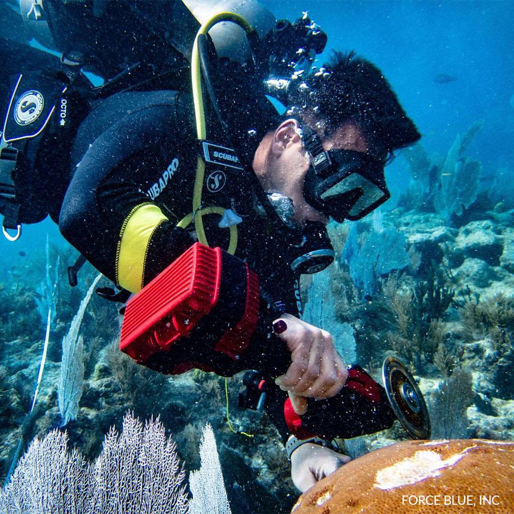 Donation - Help Veterans Save Coral Reefs