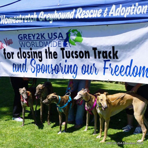 Donation - Help Save Greyhounds From The Racetrack