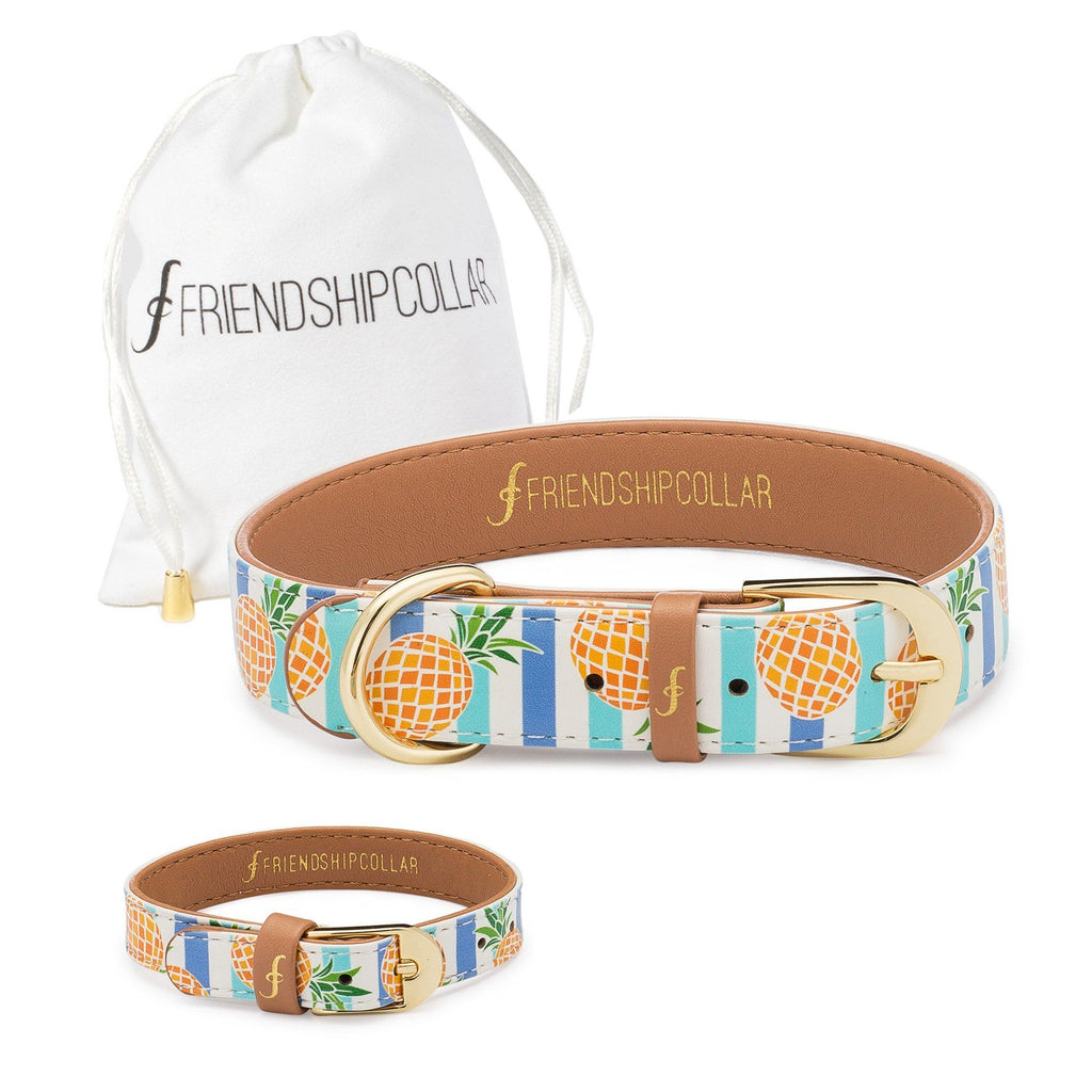 Pina Collar-da Friendship Collar & Bracelet Set
