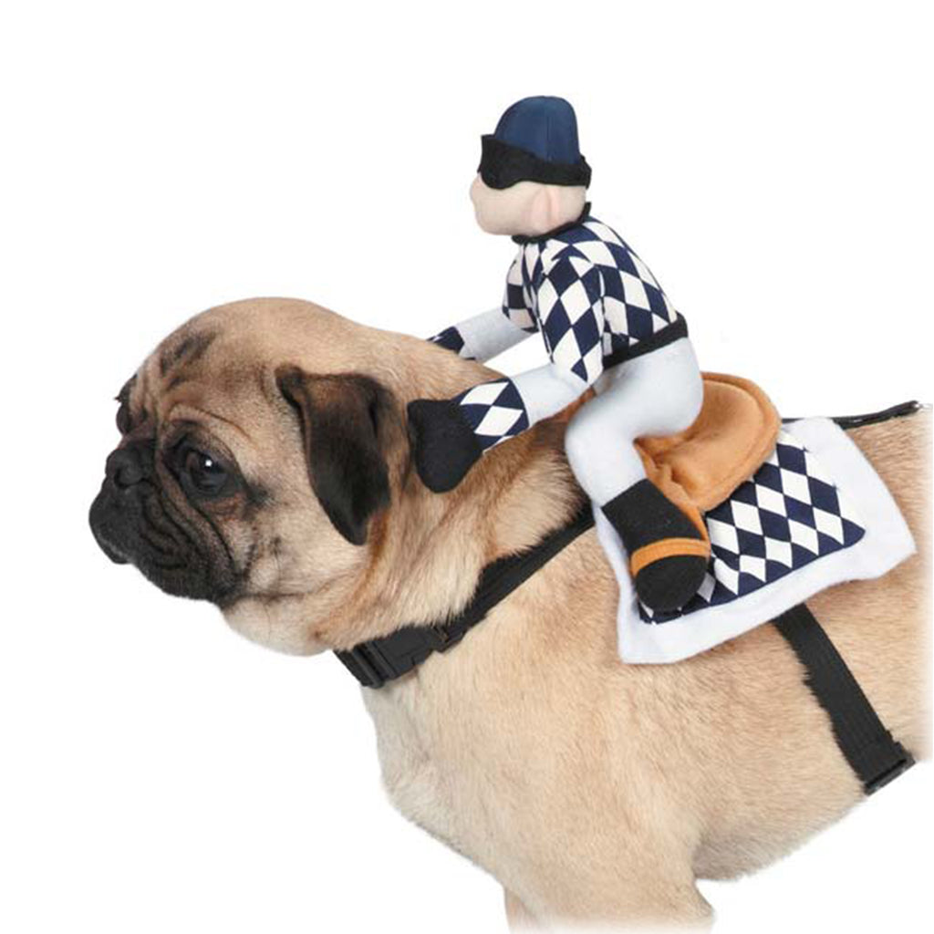 Zack & Zoey® Show Jockey Saddle Dog Costume