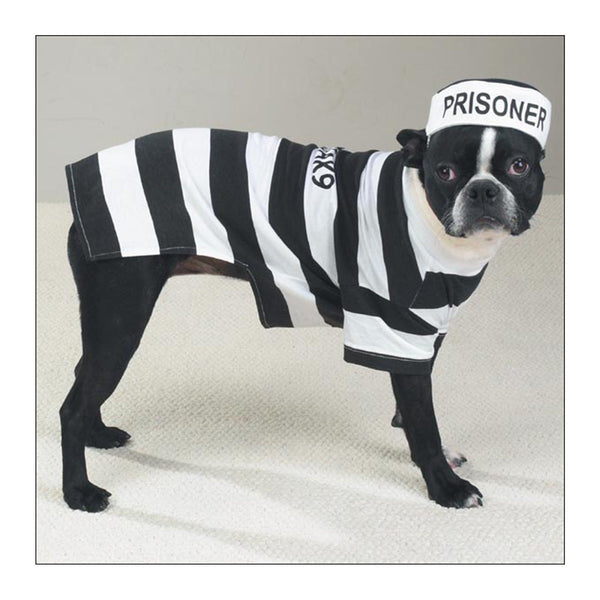 Casual Canine® Prison Pooch Dog Costume