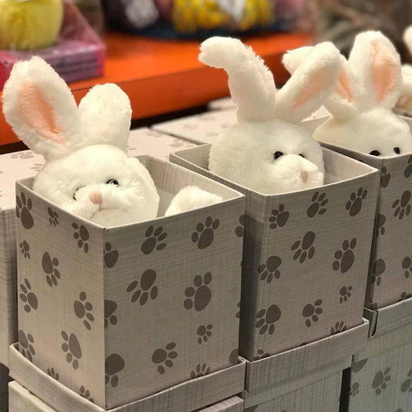 Small Boxed White Bunny