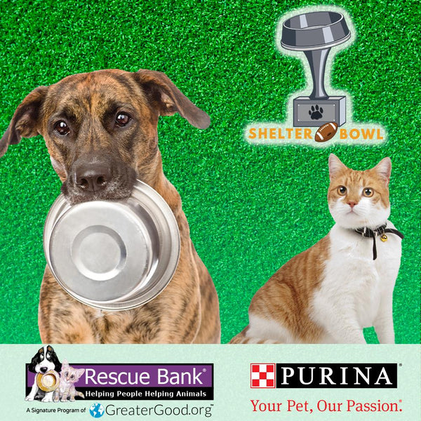 Donation - Shelter Bowl 2019: Feed Shelter Animals