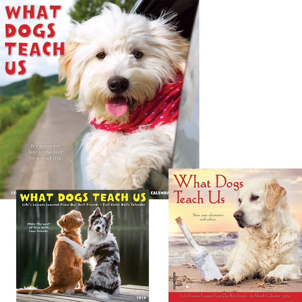 What Dogs Teach Us 2020 Calendar