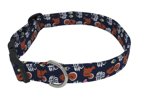 Elmo's Closet - Squirrel Dog Collar