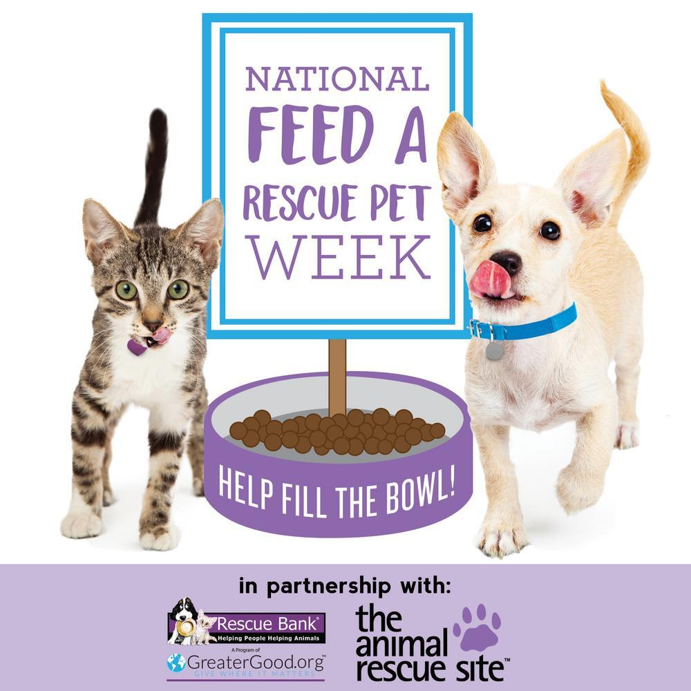 National Feed a Rescue Pet Week: Feed 3 Million Rescues!