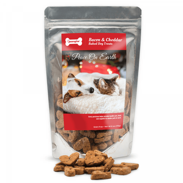 PawsGive - Crunchy Christmas Gluten-Free Dog Treats