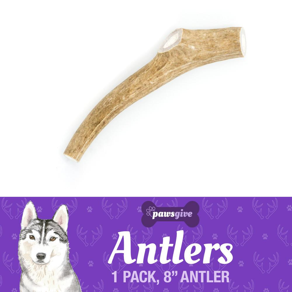 "PawsGive - 8"" Large Naturally Shed Antler Chew For Dogs"