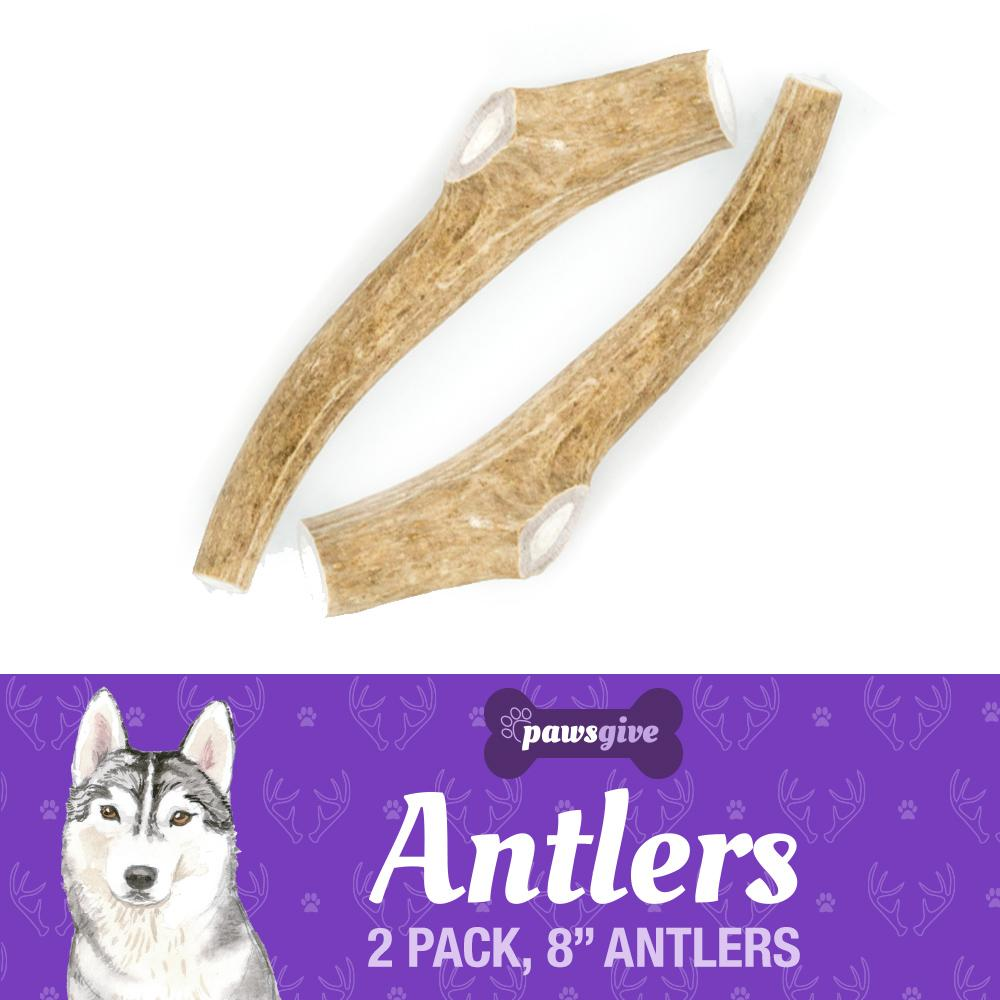 "PawsGive - Grade ""A"" Naturally Shed Antler Chews For Dogs - 8"" Large Antlers, 2 Pack"