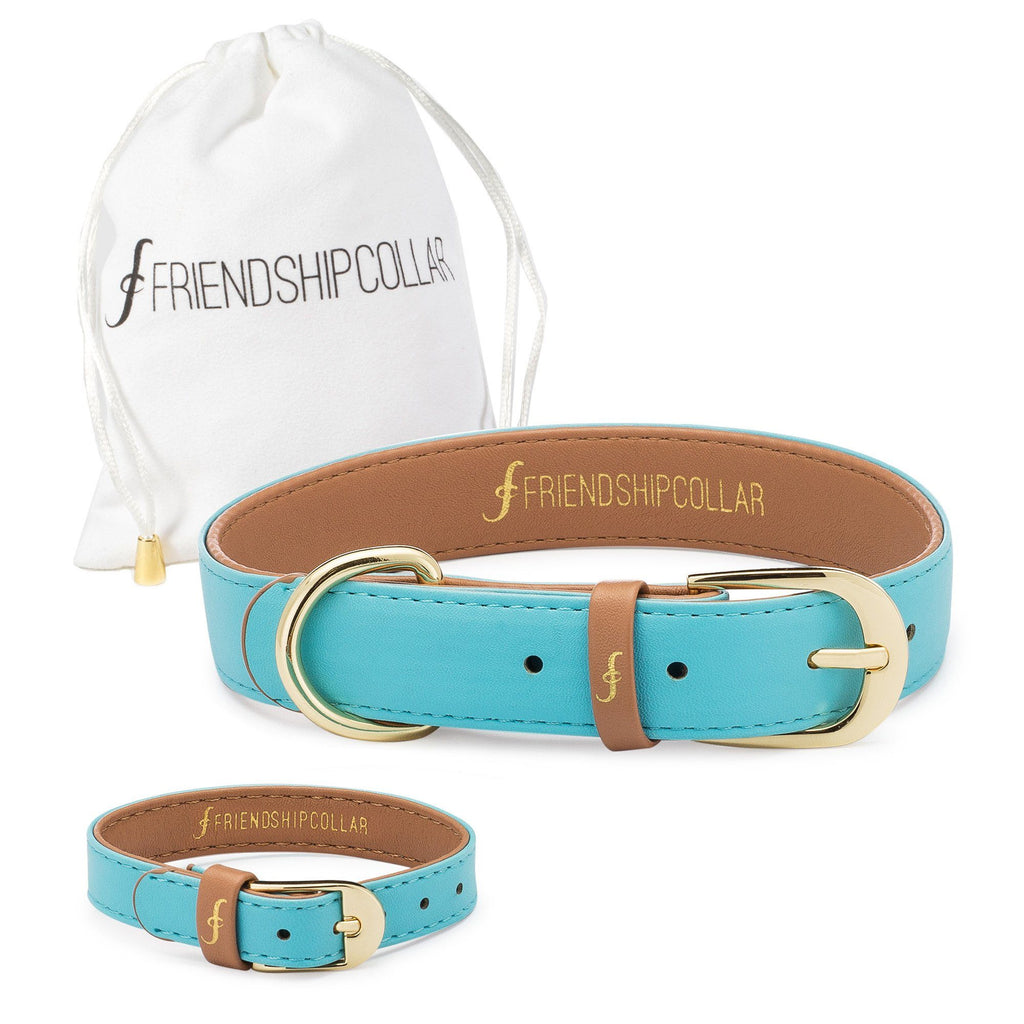 Baby Blue Friendship Collar & Bracelet Set