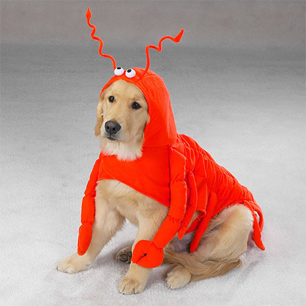 Casual Canine® Lobster Paws Dog Costume