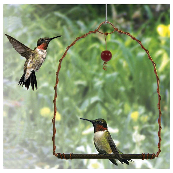 Copper Hummingbird Swing
