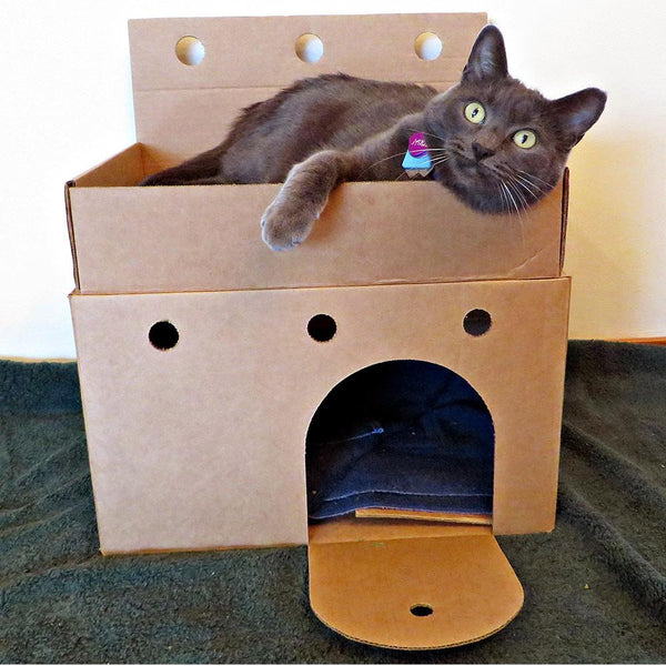 Donation - Castles For Shelter Cats