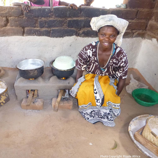 Donation - Clean Cookstoves To Save Trees