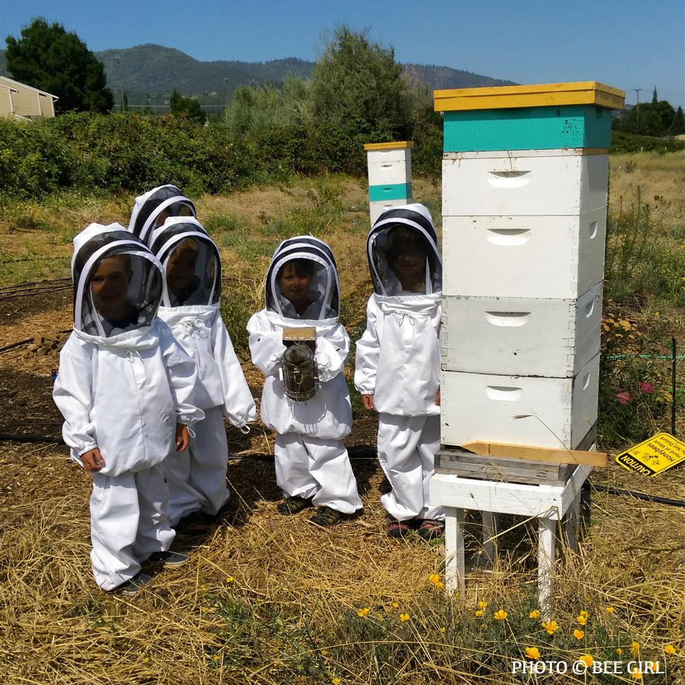 Donation - Educate Kids About Bees