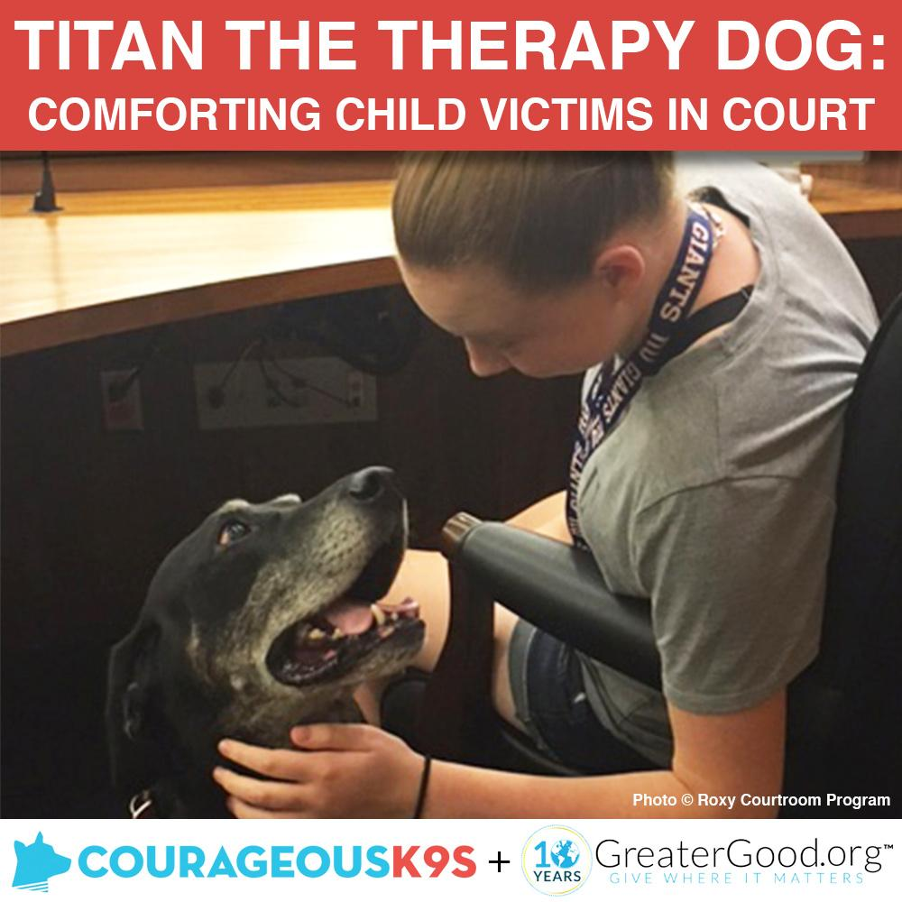 Donation - Help Titan Provide Therapy To Child Victims In Court