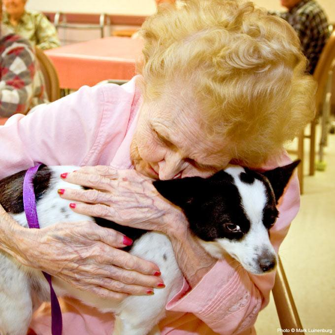 Donation - Pet Therapy For Hospice Patients