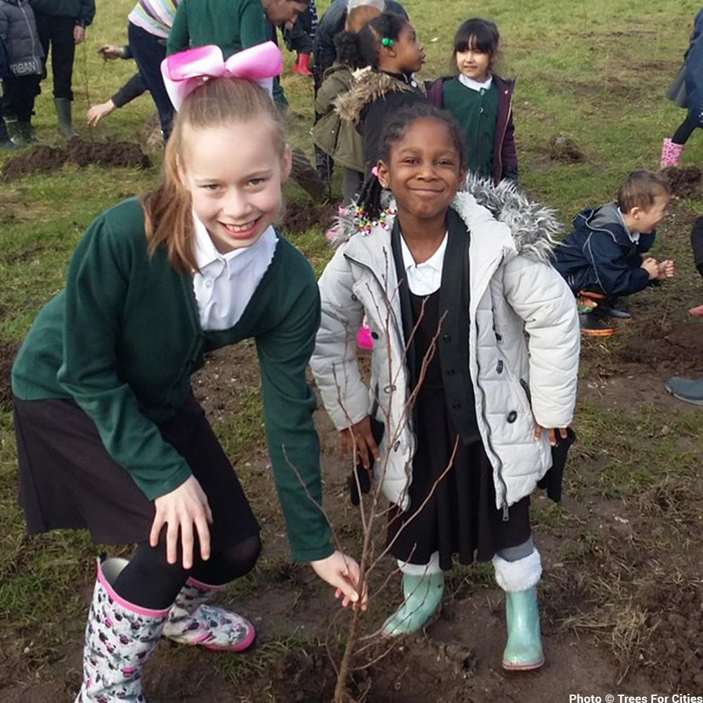 Donation - Plant Trees For Cities In The UK