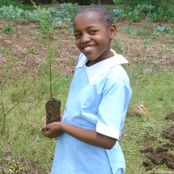 Donation - Plant Trees To Restore Nairobi's Urban Forest