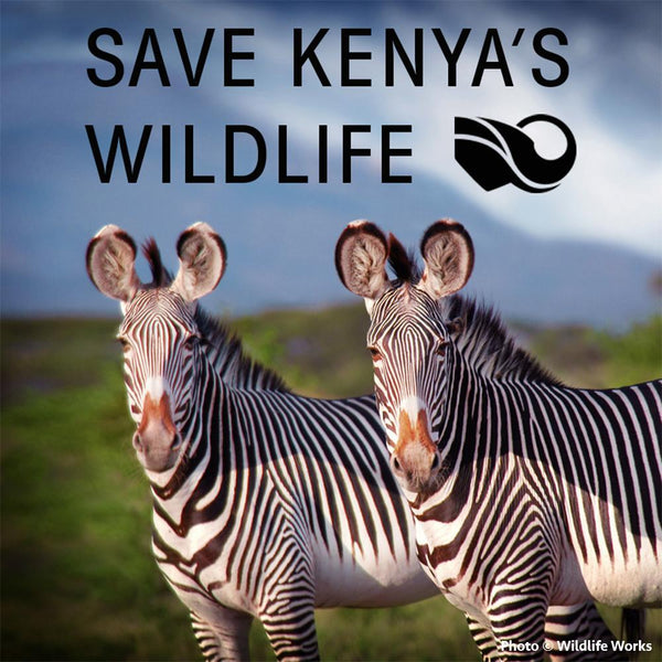 Donation - Save Kenya's Wildlife