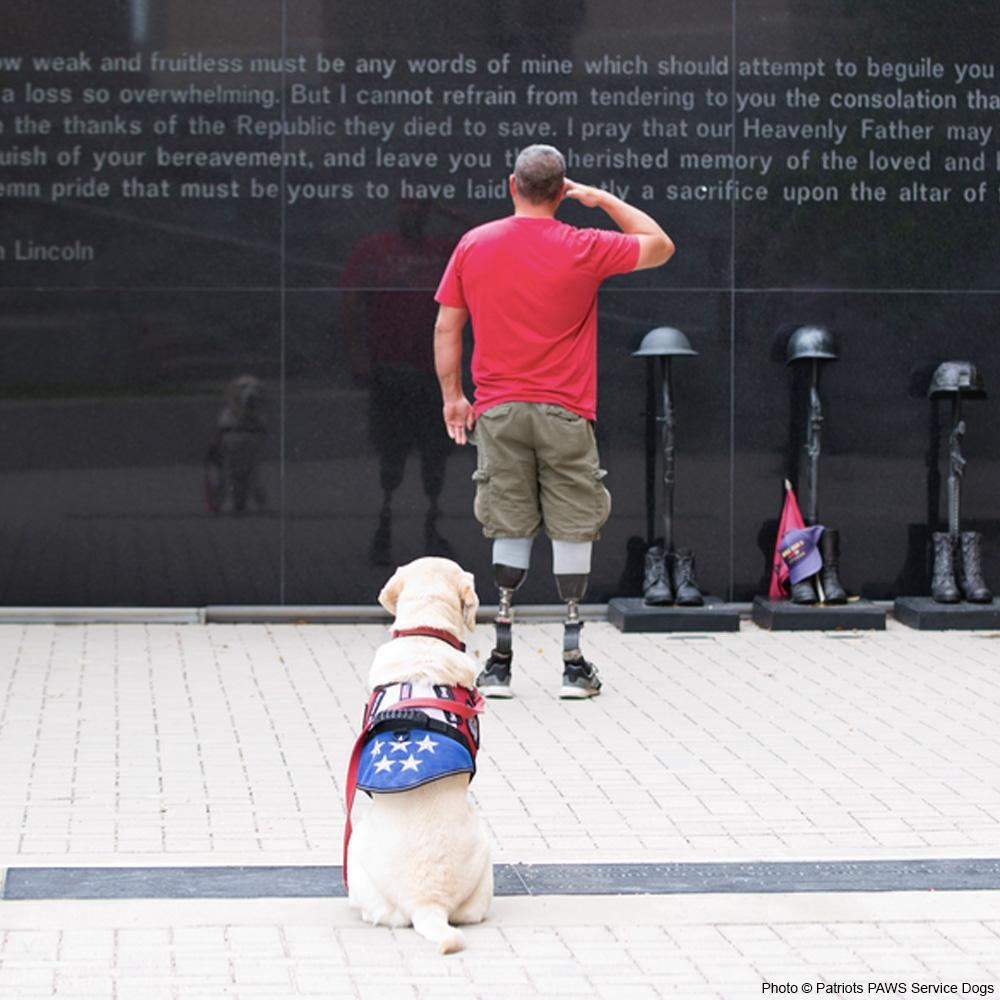 Donation - Service Dogs For American Veterans!