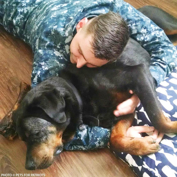 Donation - Support Heroes And Their Shelter Pets