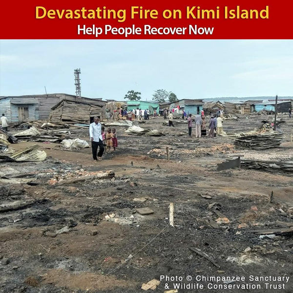 Donation - Urgent: Help Kimi Island Recover From Horrific Fire