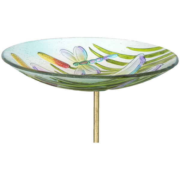 Dragonfly Shimmer Bird Bath