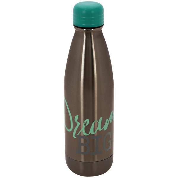 Dream Big Stainless Steel Water Bottle
