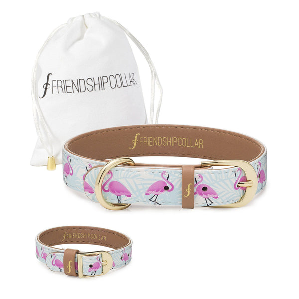 Flamingo Pup Friendship Collar & Bracelet Set